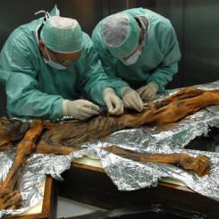 El último banquete de Ötzi arroja luz sobre la alimentación de hace 5.000 años