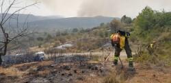 Bomberos-forestales-trabajan-incendio-Llutxent_EDIIMA20180808_0322_5