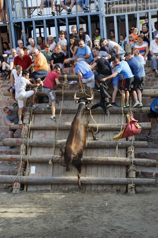 El hierro de Vicente Benavent gana el concurso de ganaderías 2