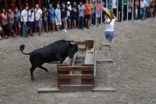 El hierro de Vicente Benavent gana el concurso de ganaderías