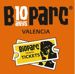 Valencia Noticias Valencia Noticias noticias de Valencia Castellón y Alicante