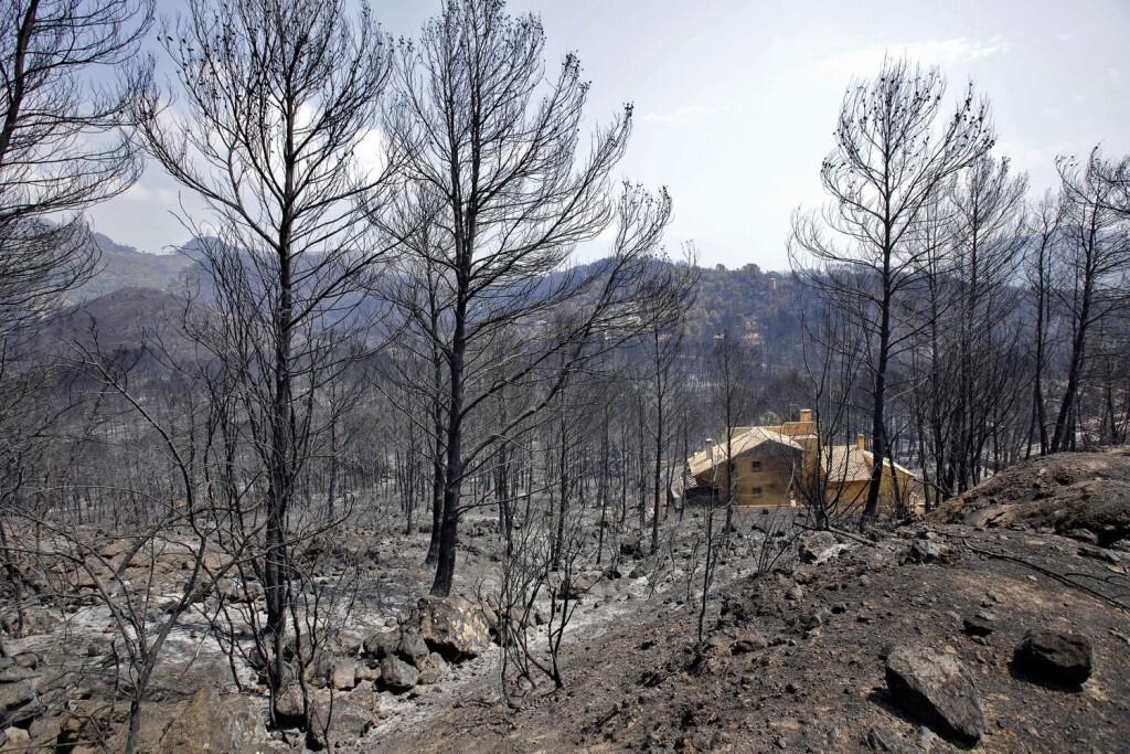 zona-calcinada-flames-incendi-Llutxent_2066203567_55921004_1500x1000