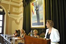 Medalla Oro de la Ciudad de Castelló (slowphotos.es) (7)