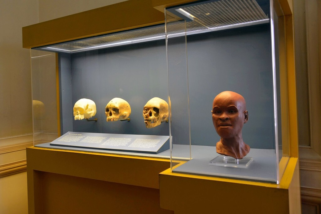esqueleto-de-luzia_2d96c55d_1500x1001