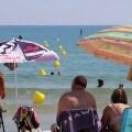 ¿Puedo llevar a mi perro a la playa? ¿Dónde puedo practicar kitesurf o paddle surf? ¿Está permitida la pesca en la Albufera?