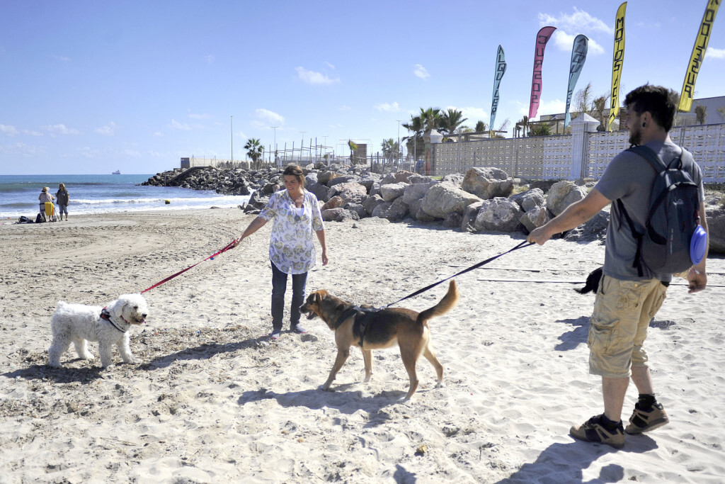 06-10-2018 L'Ajuntament consolida el servei de la platja canina playa perros amb l'estrena de la tercera temporada2