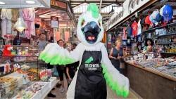 Cotorra', la mascota del Mercado Central, participa en su primer acto (2)