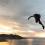 El inglés Thomas Berryman Se alza con el título de campeón mundial de Salto Base 2018