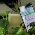 Un-sensor-que-se-alimenta-de-la-energia-de-los-moviles_image_380