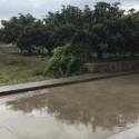 Las precipitaciones dejan un total de 70 litros por metro cuadrado en puntos de la Comunitat