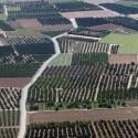 Los agricultores valencianos, los primeros en cobrar el adelanto de los pagos directos de la PAC 2018, según Agricultura