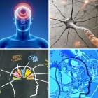 La neurociencia moderna afirma que el dolor está en la mente
