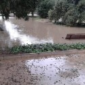 Las fuertes lluvias en València convierten a 2018 en el año más húmedo desde 2007 y el octavo desde 1864