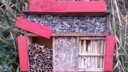 primer-hotel-insectos-Tancat-Pipa_EDIIMA20181123_0790_20
