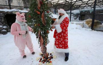 La Navidad en el mundo (2)