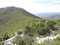 Morro_Blanc-El_prim,_Sierra_Esparreguera,_Torre_d'En_Bessora_Cs_24-10-2013_MA_Gomez-Serrano-6