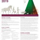CARTEL OFICIAL de las Fiestas de San Antonio Abad 2019 para los próximos días 16 y 17 de enero de 2019.