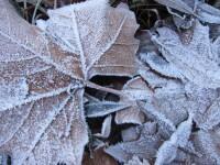 Tiempo frio polar