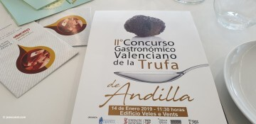 trufa andilla III (3)