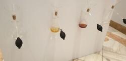 """La exposición """"SENSORIUM"""" del 28 al 31 de marzo en Valencia (4)"""