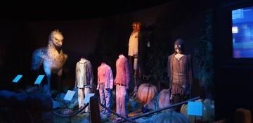 Harry Potter The Exhibition Valencia (28)