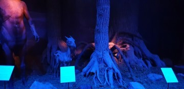 Harry Potter The Exhibition Valencia (32)