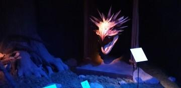 Harry Potter The Exhibition Valencia (34)