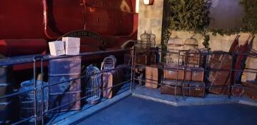 Harry Potter The Exhibition Valencia (4)