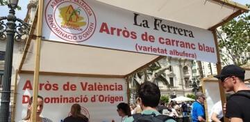 Valencia cuarta edición del Tastarròs (16)