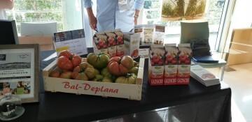 'Pon Aragón en tu mesa' organiza en Valencia el I Show Roomprofesional de productos agroalimentarios de la mano deGastrónoma. 20190520_184958 (21)