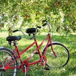 Origen del tándem y usos prácticos de este tipo de bicicleta