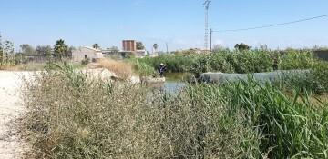 """Festa de la """"Plantà de L'arròs"""", Tancat L'Estell con arroces Tartana en El Palmar, Valencia 20190618_112850 (2)"""