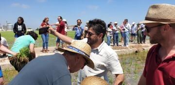 """Festa de la """"Plantà de L'arròs"""", Tancat L'Estell con arroces Tartana en El Palmar, Valencia 20190618_112850 (38)"""