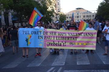 Marcha en València del Orgullo LGTBI+ para celebrar los avances y no dar ni un paso atrás en derechos (51)