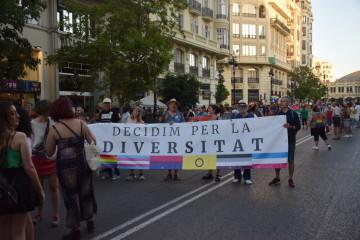 Marcha en València del Orgullo LGTBI+ para celebrar los avances y no dar ni un paso atrás en derechos (80)