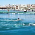 Abre en la Marina la primera piscina natural de València, frente a La Base