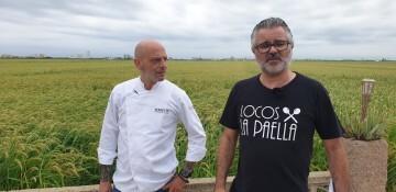 encuentro paella historica valenciana 20190827_094830 (16)