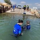 Fundación Oceanogràfic atiende a 183 tortugas marinas en tres años, con un 97% de éxito en su recuperación