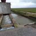Las bombas de desagüe de la Albufera han evacuado durante este temporal 16,9 hectómetros cúbicos de agua