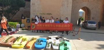 III concurso internacional Paella Valenciana de la Valldigna 20190909_105523 (11)