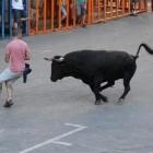 Unides Podem reclama al Consell la modificación del reglamento de espectáculos taurinos para garantizar mayor seguridad