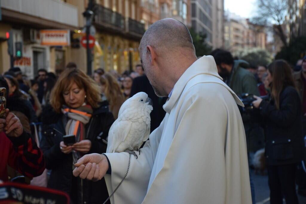 bendición de la fiesta de san Antonio Abad en València 20200117_094858 (30)