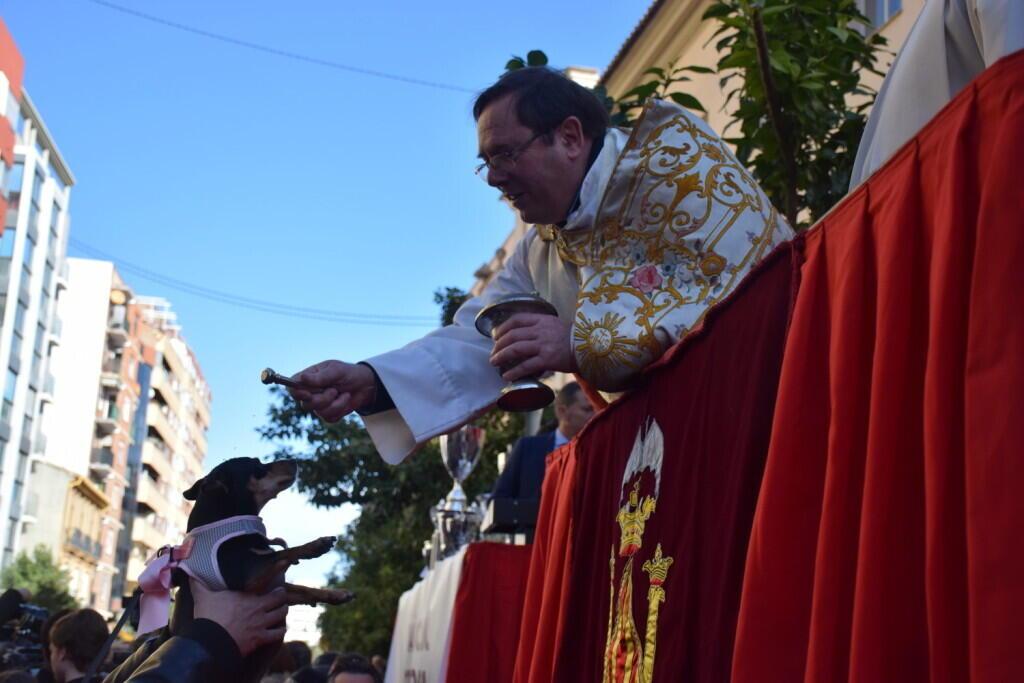 bendición de la fiesta de san Antonio Abad en València 20200117_094858 (44)