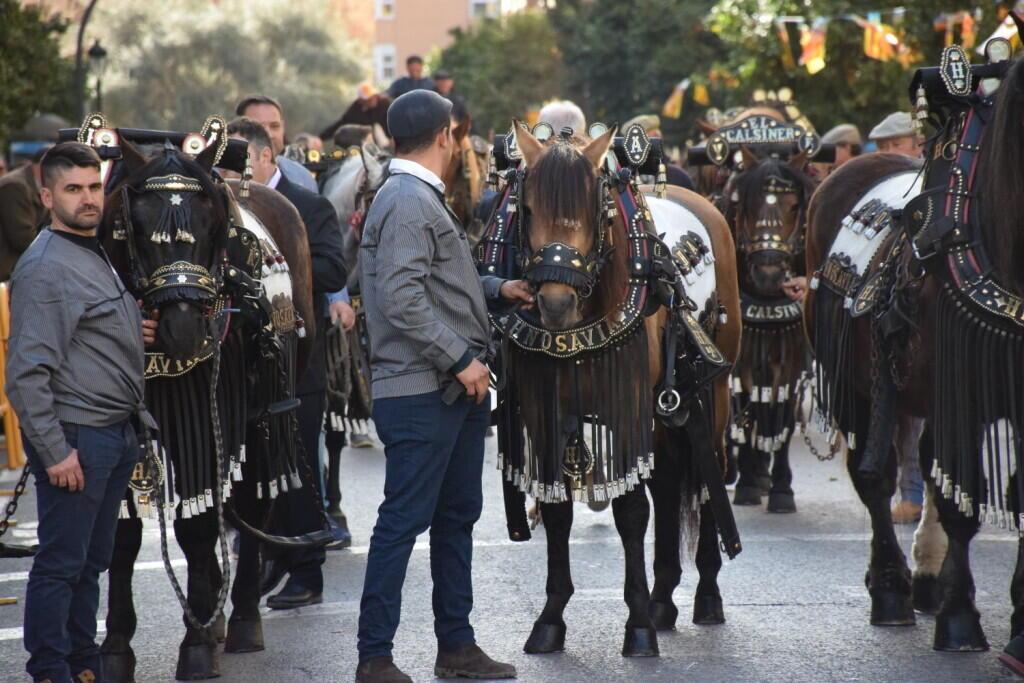 bendición de la fiesta de san Antonio Abad en València 20200117_094858 (83)