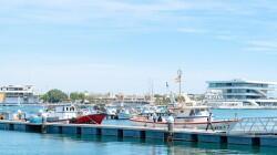 València fomenta el consumo de pescado de lonja_pesca2