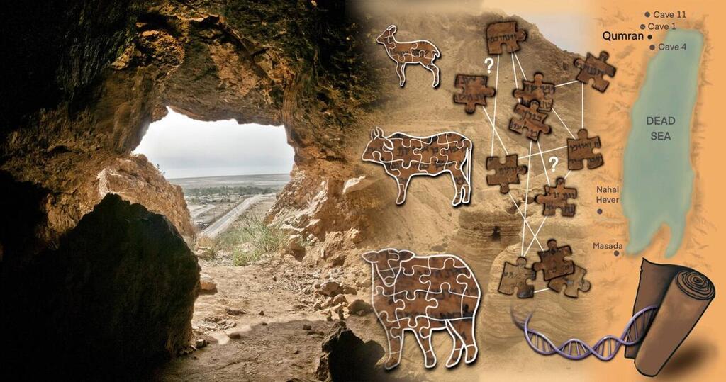 El-ADN-de-los-Manuscritos-del-Mar-Muerto-desvela-algunos-de-sus-secretos