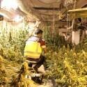 """Desmantelan un """"sofisticado"""" laboratorio de marihuana en un chalé de Paterna y detienen a cinco personas"""